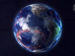 Existe un «desierto» en el medio del Pacífico. Esto es lo que vive allí