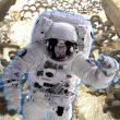 """Hongo que """"come"""" radiación de Chernóbil podría proteger a los futuros astronautas"""