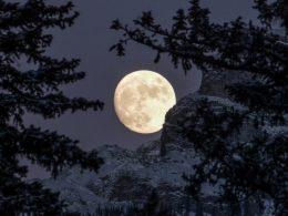 EN VIVO: Última Luna llena del 2020