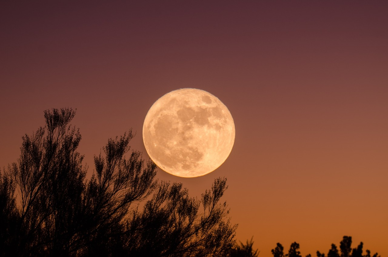 Esta semana podrás ver la primera luna llena de 2021