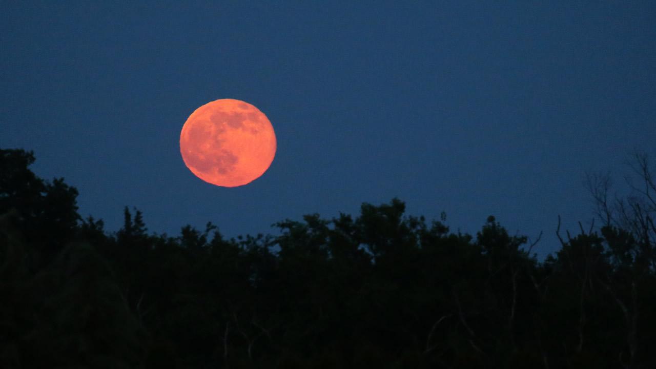 Hoy: la última superluna del 2021, la Luna de Fresa